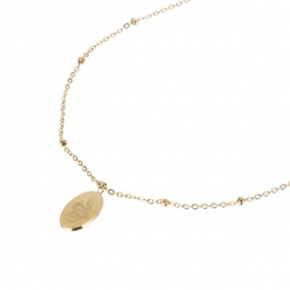 Ketting medaillon klein met slang  rose goud – Go Dutch Label