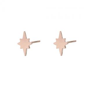 oorbellen rose goud
